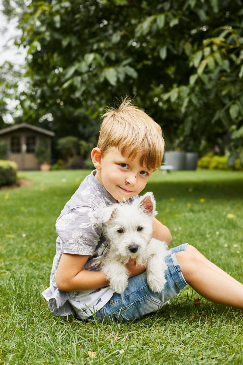 Puppy Roux 29